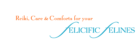 Companion and Concierge Services for Your Felicific Felines